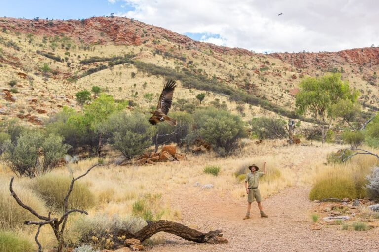 Alice Springs Wüstenpark