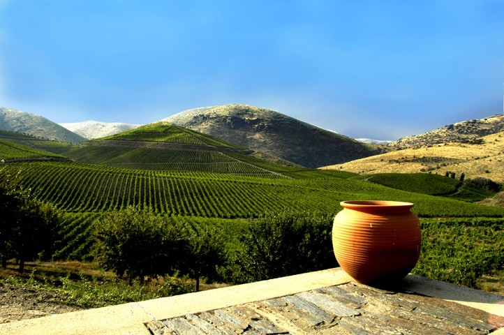 Weinregion Dão