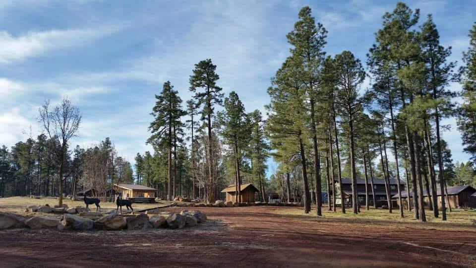 Pinetop Lakes Aktivitätszentrum & Ställe
