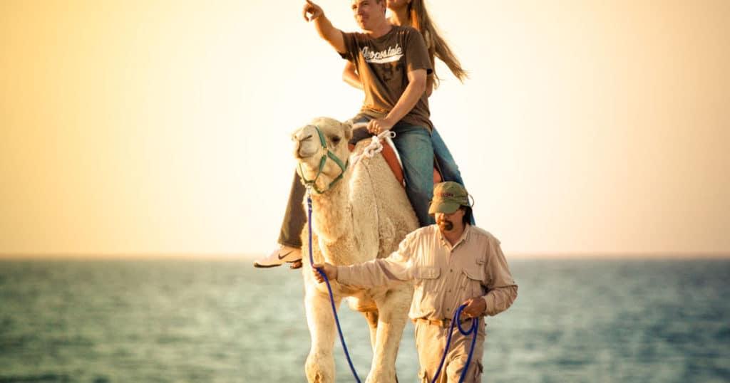 Kamelsafari in Cabo San Lucas