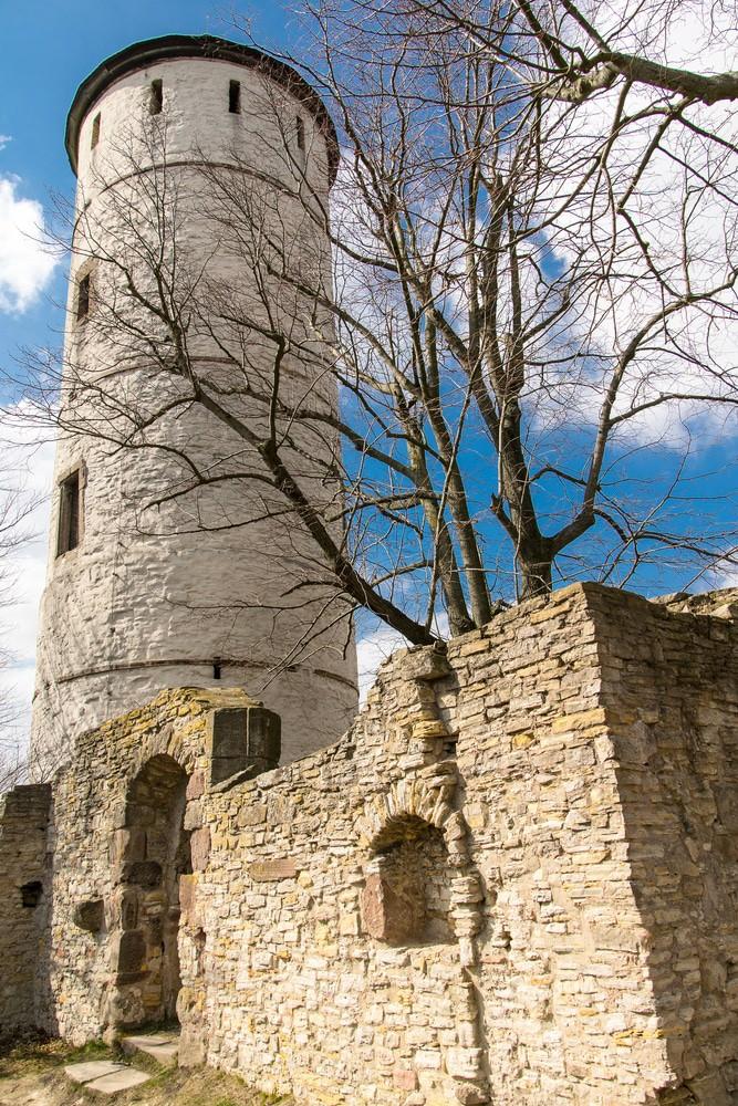 Schloss Plesse